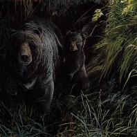 BearlyThere8_40x30